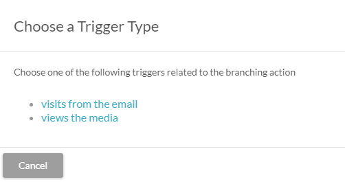 Visual workflow trigger branch